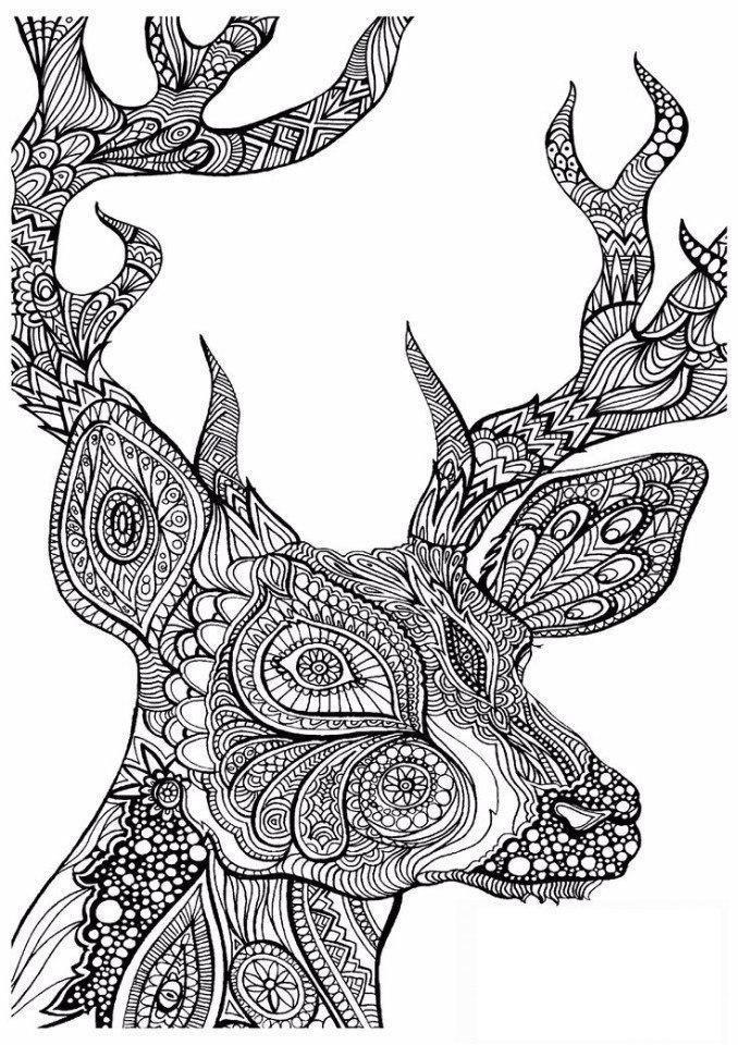 Сложные раскраски животные   Фокусы мамы