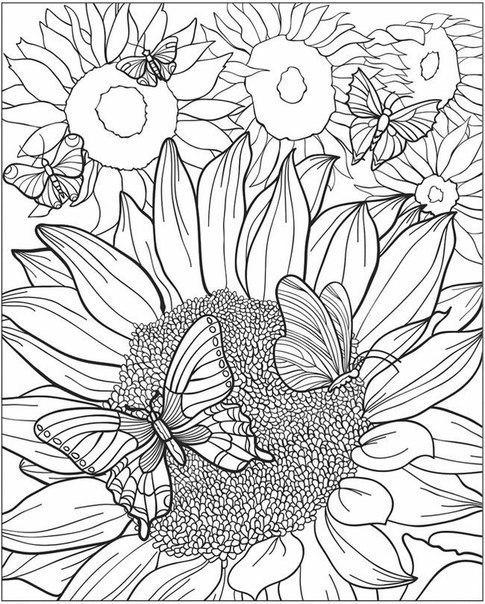 Сложная раскраска цветы | Фокусы мамы